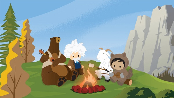 Brand your Salesforce Community