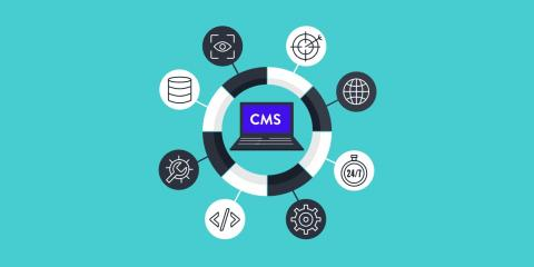 CMS Connect